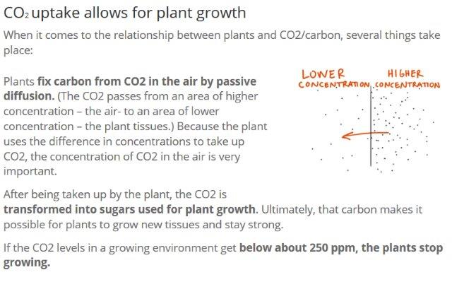 Image-C02-Concentrations-Growing-Plants